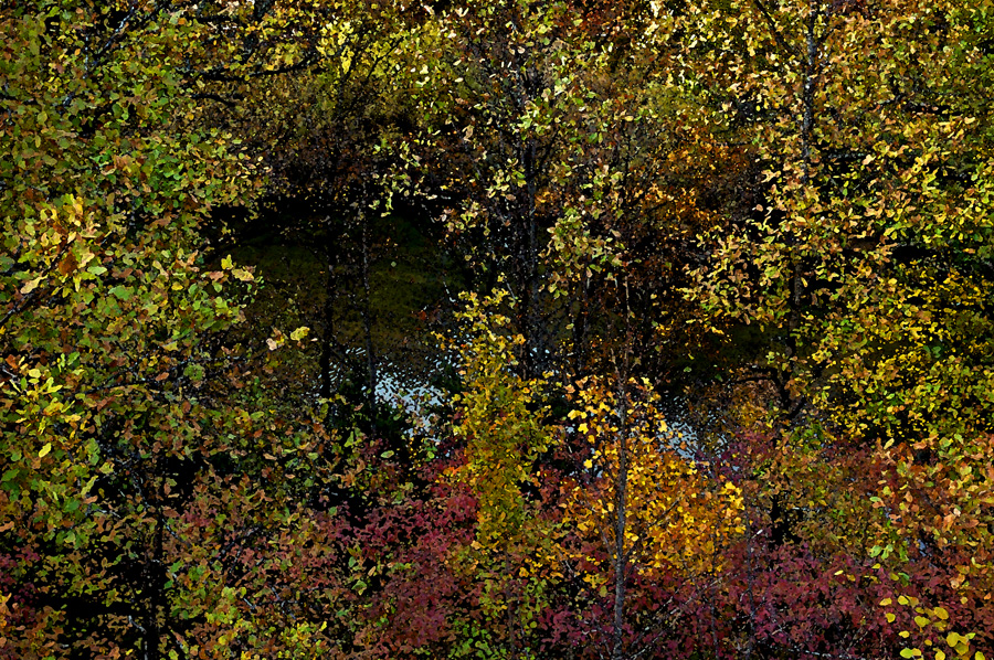 Paysage impressioniste